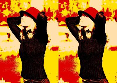 Pop Art 2 fach (70 x 100)